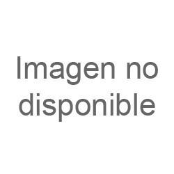 Dracaena Marginata 3 Troncos M-19